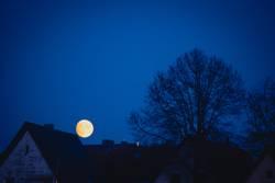 der Mond über den Dächern