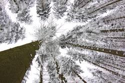 letzter Gruß vom Winter