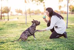 cheerful woman and dog shaking hand and paw
