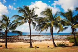 hawaii four 0