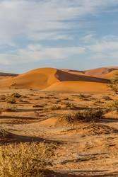 Wüste Namib / Namibia