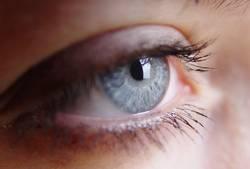 Augen auf
