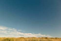 Horizont mit Dünengras, blauem Himmel und Wolkenstreifen