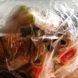 fischtüte