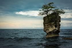 Insel der Natur