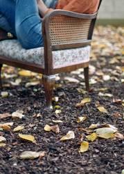Herbstgeflüster II