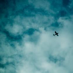 Lonesome Aviator