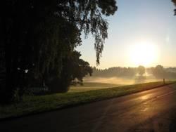 Morgendliches Nebelmeer I