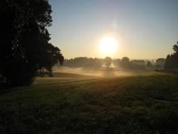 Morgendliches Nebelmeer III