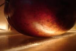 mangolicht