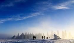 Winterwanderland