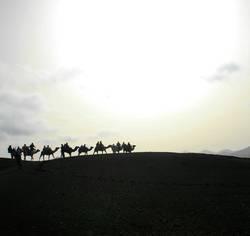 Wüstenromantik
