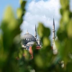 Blaue Moschee im Grünen