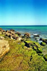 Das Meer zieht sich zurück