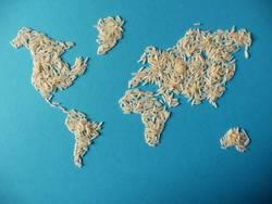 Weltkarte aus Reis