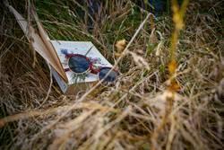 Buch und Sonnenbrille im Gras