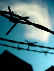 FREIHEIT! | stacheldraht himmel hoffnung wolken romantik prison