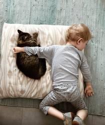 Freundschaft - Kind umarmt Katze beim Schlafen Tierschutz