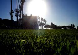 Sun of San Diego part2