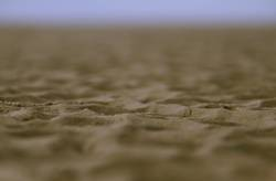 SPO|09 - Ich hab noch Sand in den Schuhen...