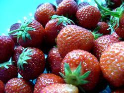 Erdbeeren für alle