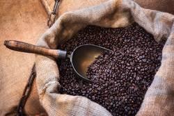 Roasted coffee beans in jute sack. Coffee bean bags