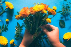Arranging bouquet of yellow flowers on blue table