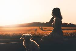 Woman silhouette and dog enjoying sunset in nature