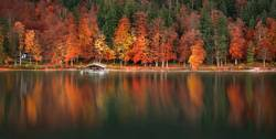Autumn forest and water reflection panoramic view