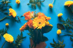 Bouquet of yellow flowers held in hand