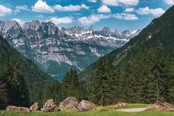 Mountain peaks with green forest and rocks in Swiss Alps
