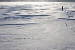 Schnee-Stapfen