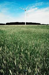 windrad hinter biomasse
