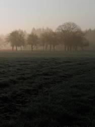 früh morgens 1