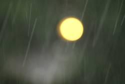 Ein Licht im Regen