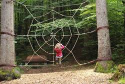 kleine große Spinne
