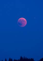 Blutmond mit der internationalen Raumstation ISS