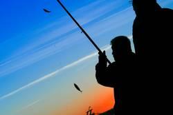 Angler Silhouette