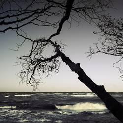 Guten Morgen, Ostsee