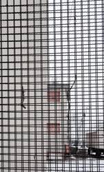 Schule hinter Gitter