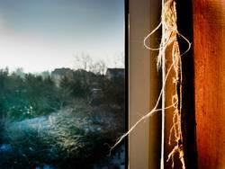 Fusseln am Fenster