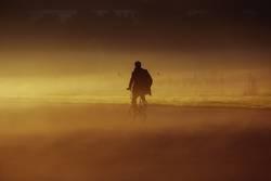 Nebelradler