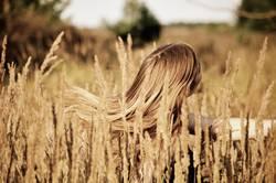 Der Haarschwung im Felde