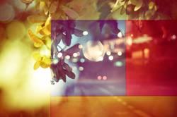 grafisches Hintergrundbild mit Straße und Blättern