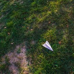 Papierflieger auf der Wiese
