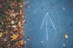 Pfeil auf Asphalt im Herbst