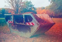 Container mit Laub auf Wiese im Wald
