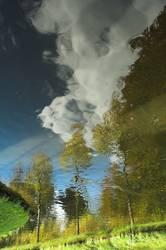 Unklare Landschaft