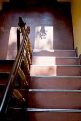 Treppenhaus mit Blumentopf
