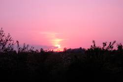 Ostfriesen Sunset